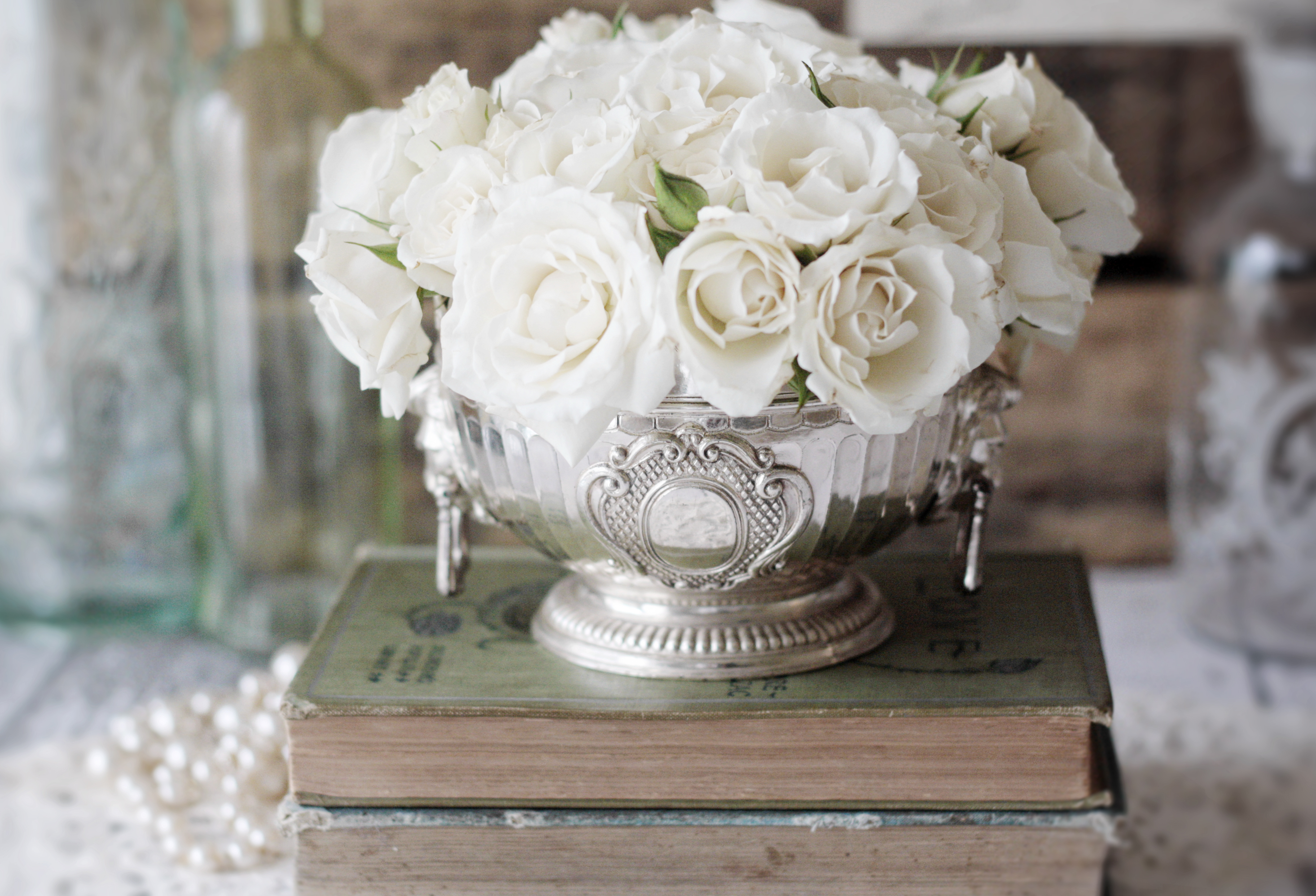 Winter white roses for you image mightylinksfo