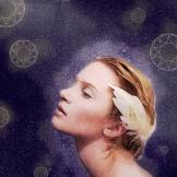 Stardust, 2013 Digital art